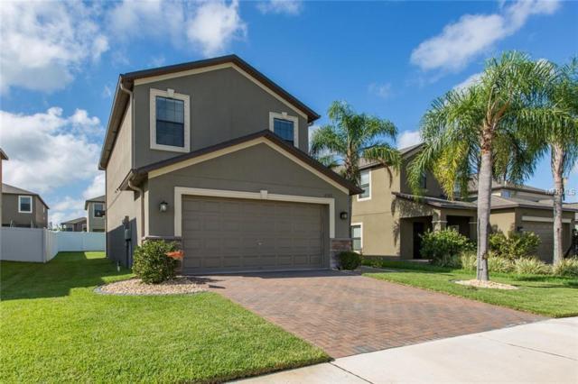12322 Victarra Place, New Port Richey, FL 34655 (MLS #T3129237) :: Team Virgadamo