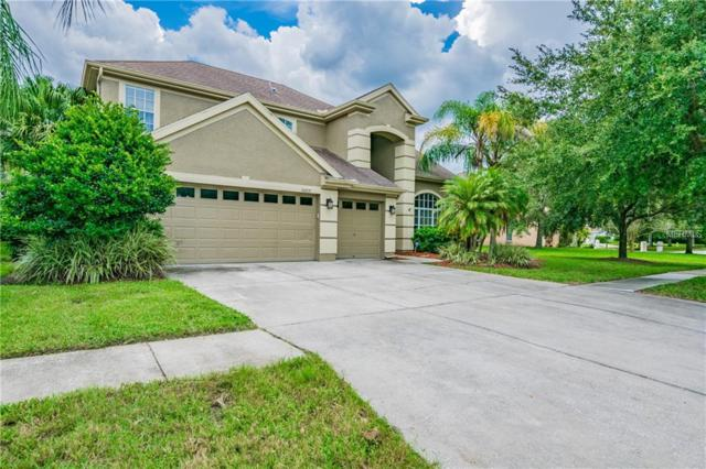 18809 Chopin Drive, Lutz, FL 33558 (MLS #T3129257) :: Andrew Cherry & Company