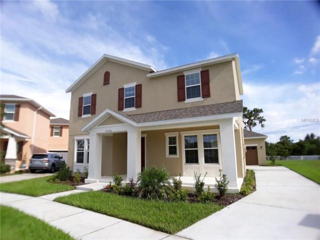 32546 Rapids Loop, Wesley Chapel, FL 33545 (MLS #T3129855) :: The Duncan Duo Team
