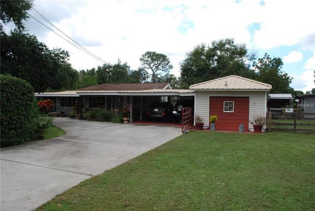 4510 Fritzke Road, Dover, FL 33527 (MLS #T3132155) :: RE/MAX CHAMPIONS