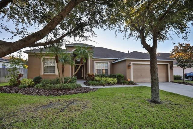 7507 Regents Garden Way, Apollo Beach, FL 33572 (MLS #T3132176) :: RE/MAX CHAMPIONS
