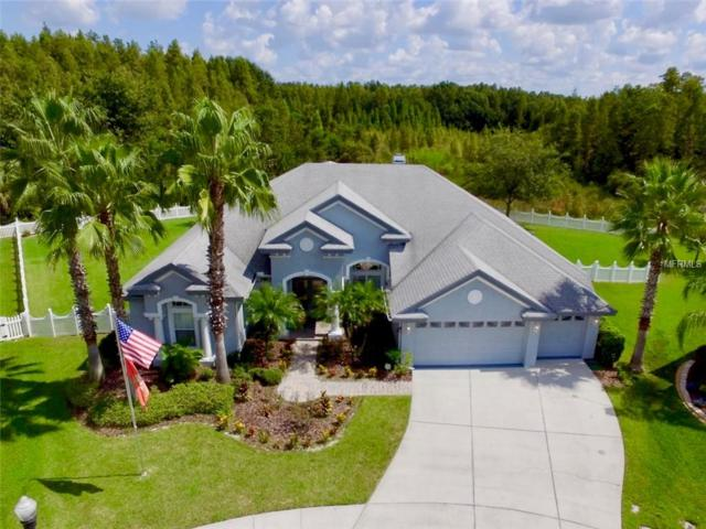 3650 Kalanchoe Place, Wesley Chapel, FL 33544 (MLS #T3132408) :: Griffin Group