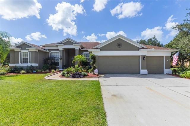 14249 Creek Run Drive, Riverview, FL 33579 (MLS #T3133022) :: The Duncan Duo Team