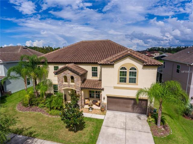 19315 Yellow Clover Drive, Tampa, FL 33647 (MLS #T3133367) :: Team Bohannon Keller Williams, Tampa Properties