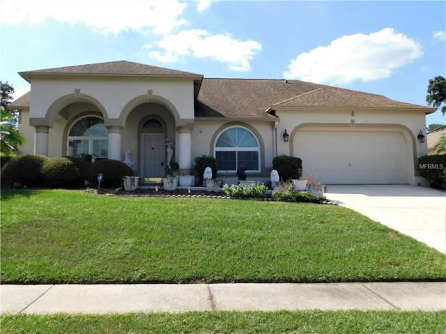 4529 Oak River Circle, Valrico, FL 33596 (MLS #T3135852) :: Dalton Wade Real Estate Group