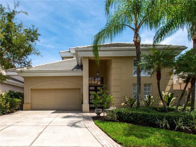 904 Anchorage Road, Tampa, FL 33602 (MLS #T3136092) :: Team Bohannon Keller Williams, Tampa Properties