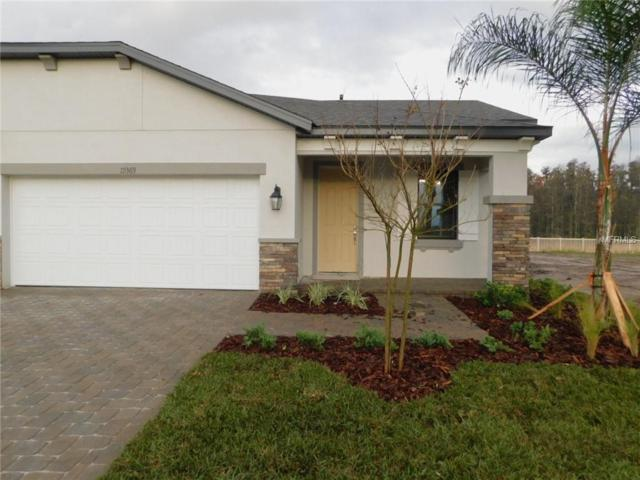 19369 Hawk Valley Drive, Tampa, FL 33647 (MLS #T3136131) :: Cartwright Realty