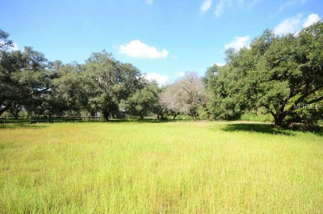 1ST, Seffner, FL 33584 (MLS #T3137411) :: Mark and Joni Coulter | Better Homes and Gardens