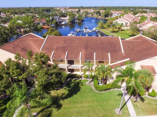 6328 Grand Bahama Circle H, Tampa, FL 33615 (MLS #T3138545) :: Lovitch Realty Group, LLC
