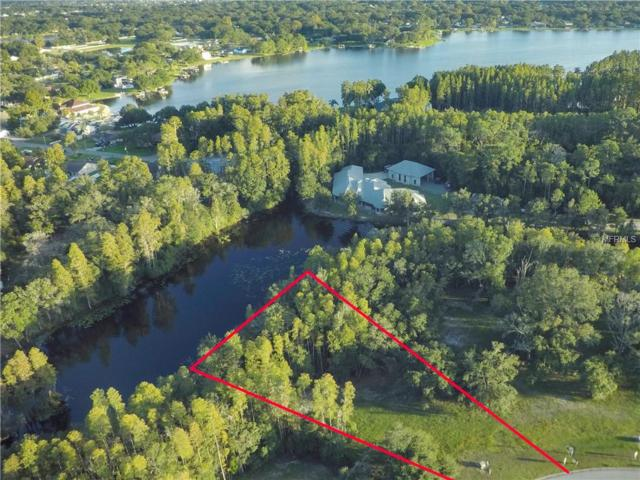3968 Cove Lake Place, Land O Lakes, FL 34639 (MLS #T3138559) :: Team Suzy Kolaz