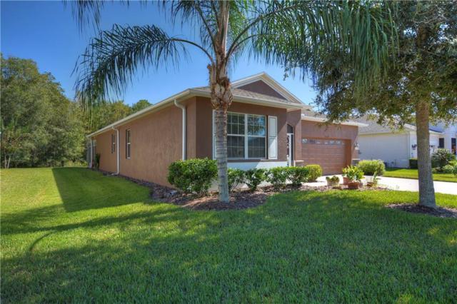 10539 Machrihanish Circle, San Antonio, FL 33576 (MLS #T3138900) :: Delgado Home Team at Keller Williams
