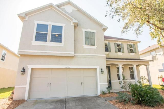 7200 Bridgeview Drive, Wesley Chapel, FL 33545 (MLS #T3139892) :: Team Bohannon Keller Williams, Tampa Properties