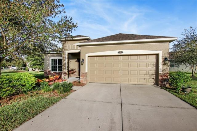 10635 Pictorial Park Drive, Tampa, FL 33647 (MLS #T3140084) :: Revolution Real Estate