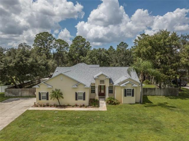 11311 Tralee Drive, Riverview, FL 33569 (MLS #T3140207) :: The Duncan Duo Team