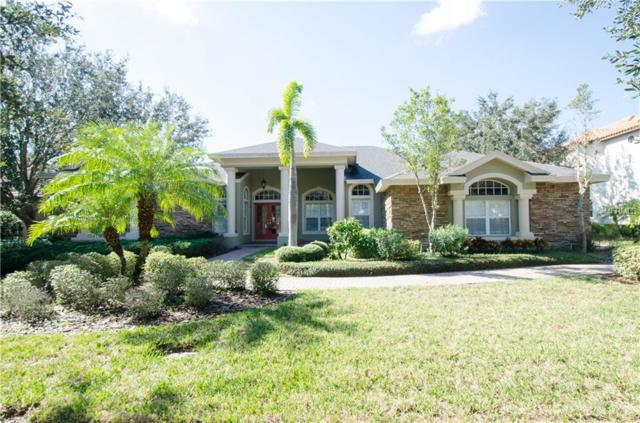 1377 Playmoor Drive, Palm Harbor, FL 34683 (MLS #T3140703) :: Delgado Home Team at Keller Williams