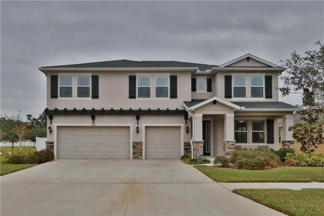2239 Valterra Vista Way, Valrico, FL 33594 (MLS #T3141155) :: Revolution Real Estate