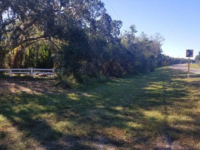 2819 Saffold Road, Wimauma, FL 33598 (MLS #T3141168) :: The Duncan Duo Team