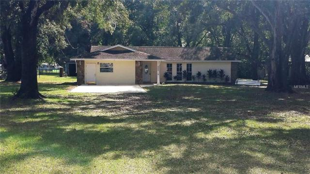 4201 W Sam Allen Road, Plant City, FL 33565 (MLS #T3141516) :: Gate Arty & the Group - Keller Williams Realty