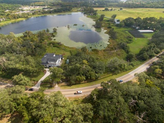 Gunn Highway, Odessa, FL 33556 (MLS #T3142374) :: The Duncan Duo Team