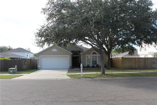 Address Not Published, Riverview, FL 33578 (MLS #T3142707) :: The Duncan Duo Team