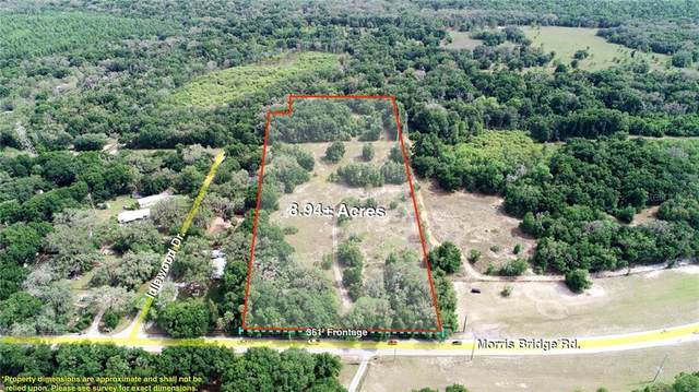 Address Not Published, Thonotosassa, FL 33592 (MLS #T3143865) :: Team Buky