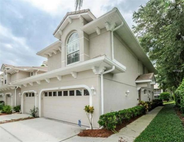 4267 Preserve Place, Palm Harbor, FL 34685 (MLS #T3144180) :: Paolini Properties Group