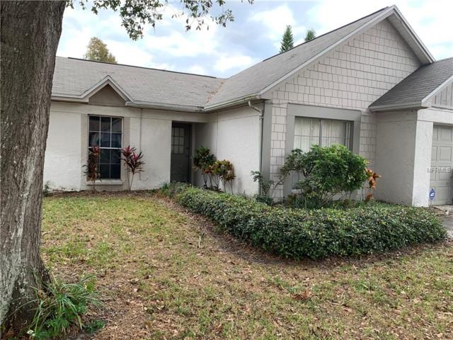6721 Gilda Drive, Tampa, FL 33625 (MLS #T3145202) :: Team Bohannon Keller Williams, Tampa Properties