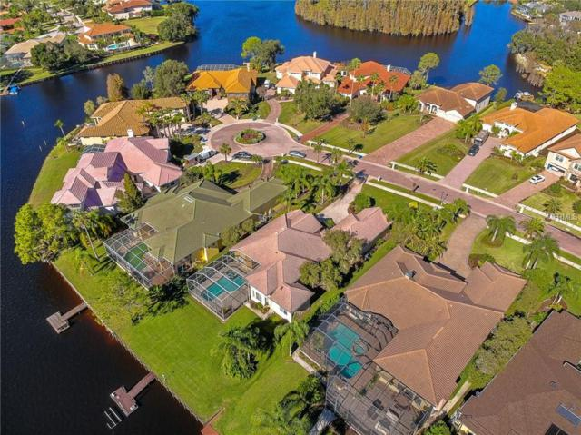 17810 Saint Lucia Isle Drive, Tampa, FL 33647 (MLS #T3145377) :: Gate Arty & the Group - Keller Williams Realty