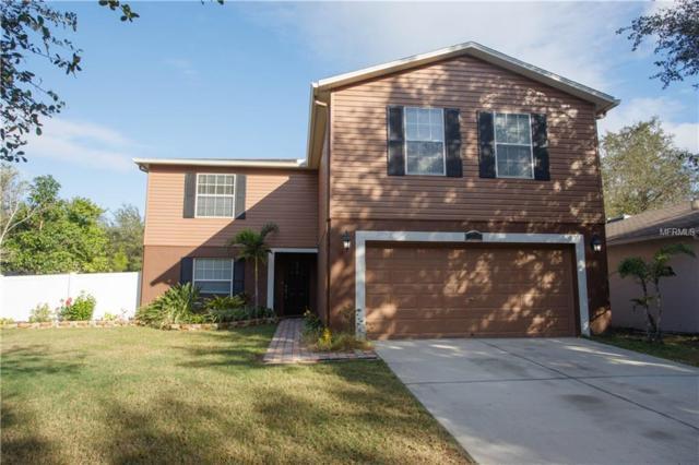 13901 Fareham Road, Odessa, FL 33556 (MLS #T3146071) :: Team Bohannon Keller Williams, Tampa Properties