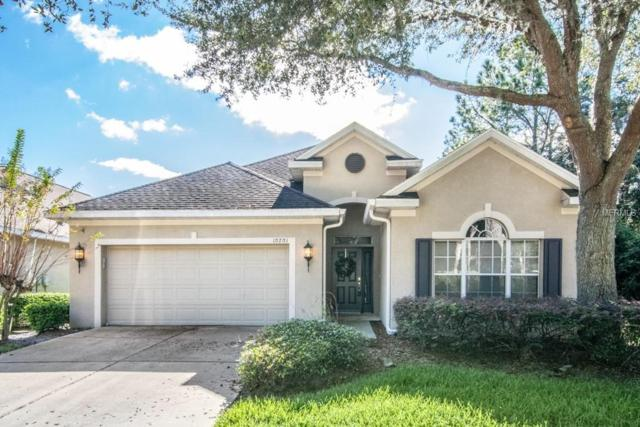 10201 Evergreen Hill Drive, Tampa, FL 33647 (MLS #T3146137) :: Team Bohannon Keller Williams, Tampa Properties