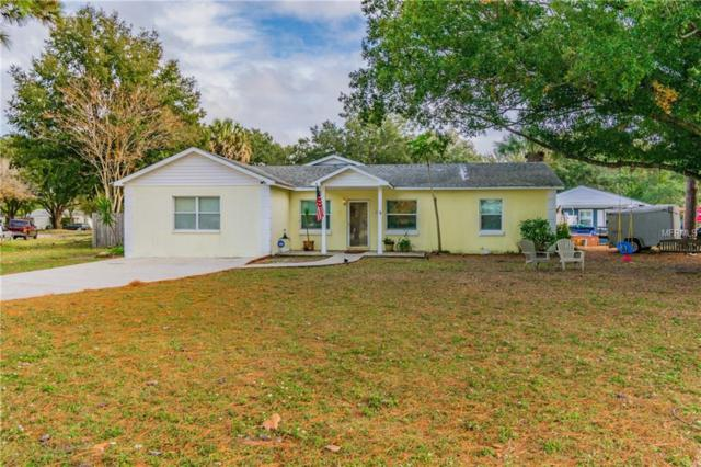 4413 W Lawn Avenue, Tampa, FL 33611 (MLS #T3147413) :: Griffin Group