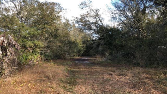 Vaughn Rd., Plant City, FL 33565 (MLS #T3148740) :: Homepride Realty Services