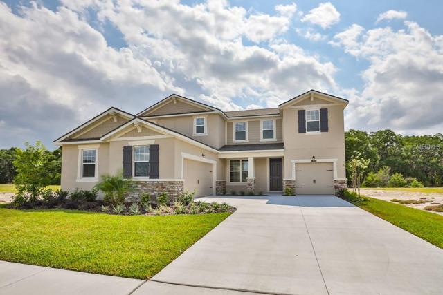 12933 Satin Lily Drive 14E, Riverview, FL 33579 (MLS #T3149307) :: Team Bohannon Keller Williams, Tampa Properties