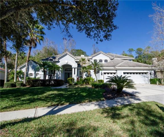 16344 Heathrow Drive, Tampa, FL 33647 (MLS #T3149967) :: Medway Realty