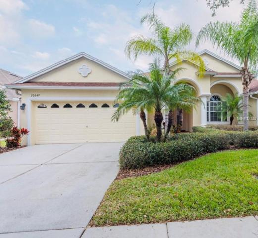 20649 Amanda Oak Court, Land O Lakes, FL 34638 (MLS #T3150063) :: Advanta Realty