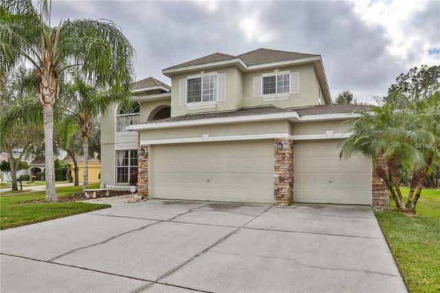 8275 Swann Hollow Drive, Tampa, FL 33647 (MLS #T3150415) :: Team Bohannon Keller Williams, Tampa Properties