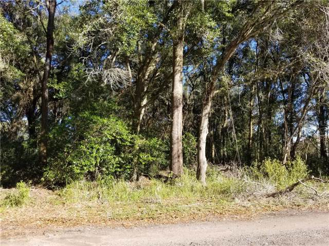 11648 Bessie Dix Road, Seffner, FL 33584 (MLS #T3151198) :: Rabell Realty Group
