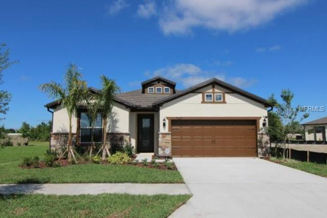 7427 Yale Harbor Drive, Wesley Chapel, FL 33545 (MLS #T3151437) :: The Duncan Duo Team