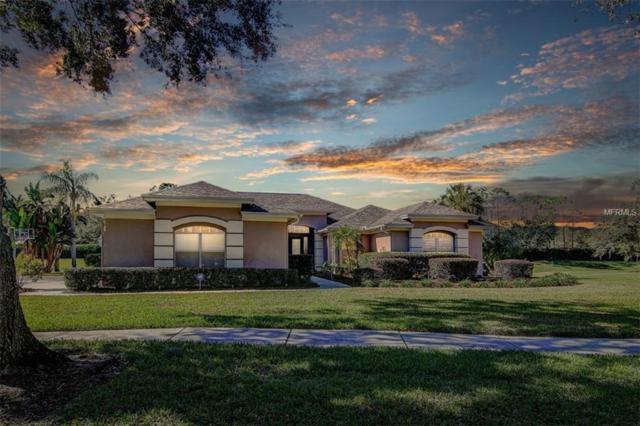 3705 Smoke Hickory Lane, Valrico, FL 33596 (MLS #T3151725) :: Team Bohannon Keller Williams, Tampa Properties