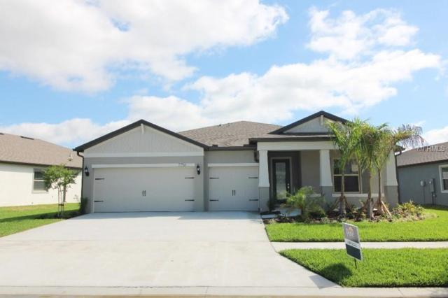 7756 Yale Harbor Drive, Wesley Chapel, FL 33545 (MLS #T3151925) :: The Duncan Duo Team