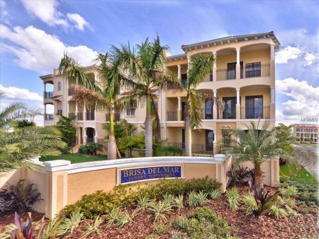 6418 Mayra Shores Lane, Apollo Beach, FL 33572 (MLS #T3152449) :: Cartwright Realty