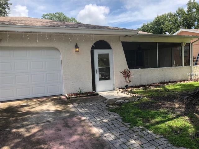 4817 Cypress Tree Drive, Tampa, FL 33624 (MLS #T3152756) :: Team Bohannon Keller Williams, Tampa Properties