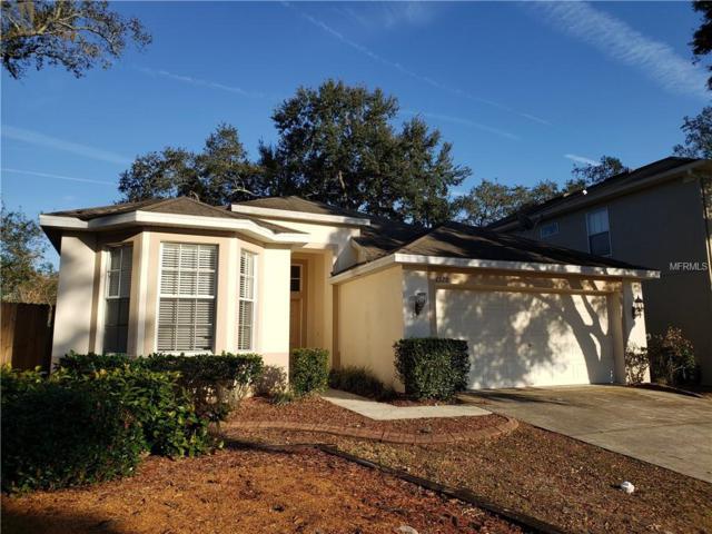 7320 Brightwater Oaks Drive, Tampa, FL 33625 (MLS #T3154378) :: Team Bohannon Keller Williams, Tampa Properties