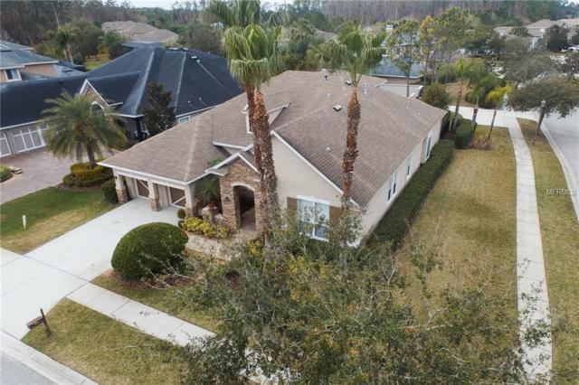 12001 San Chaliford Court, Tampa, FL 33626 (MLS #T3155934) :: Andrew Cherry & Company