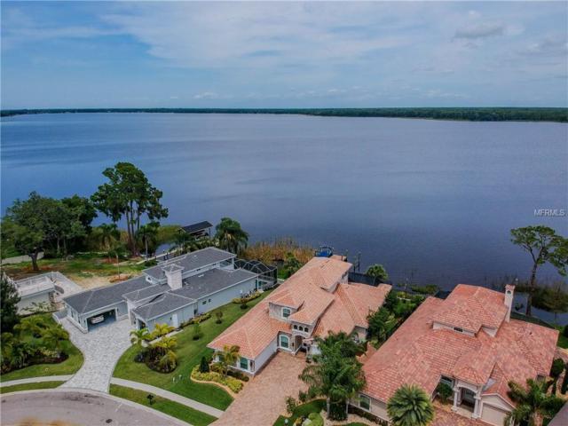 4586 Grand Lakeside Drive, Palm Harbor, FL 34684 (MLS #T3157273) :: Delgado Home Team at Keller Williams