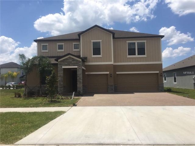 13613 White Sapphire Road, Riverview, FL 33579 (MLS #T3158426) :: Medway Realty