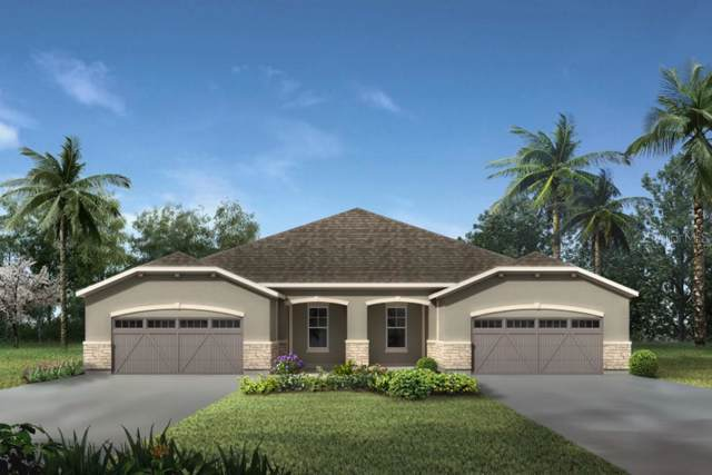 10319 Planer Picket Drive #293, Riverview, FL 33569 (MLS #T3159393) :: Griffin Group