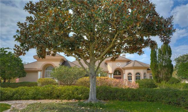 5515 Keeler Oak Street, Lithia, FL 33547 (MLS #T3160480) :: Team Bohannon Keller Williams, Tampa Properties