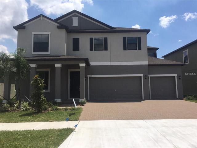 11723 Sunburst Marble Drive, Riverview, FL 33579 (MLS #T3160519) :: Medway Realty
