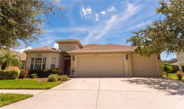 16136 Bridgepark Drive, Lithia, FL 33547 (MLS #T3160611) :: Cartwright Realty